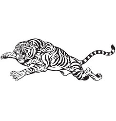 jumping tiger black and white vector image