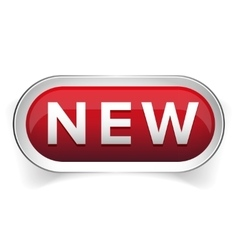 New web button vector image
