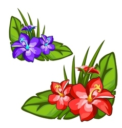 Red and blue beautiful flower on green leaves vector