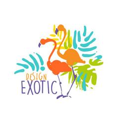exotic logo design with flamingo birds colorful vector image