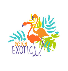 exotic logo design with flamingo birds colorful vector image vector image