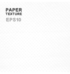 Grunge white paper texture vector image vector image