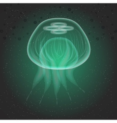 Jellyfish The underwater world vector image