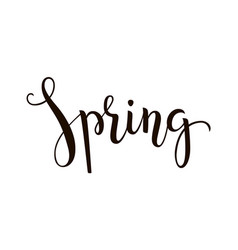 spring - hand-drawn lettering decoration text on vector image