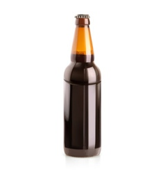 Beer in a bottle object vector image