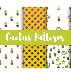 Set of patterns with colorful cactus vector