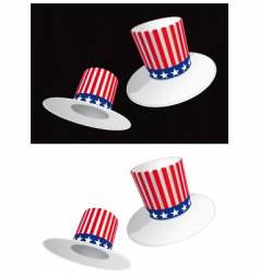 usa hat vector image vector image