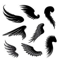 wings set vector image vector image