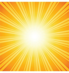 sunburst backgrounds vector image