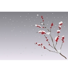 Season winter branch berries under snow vector