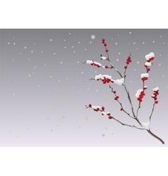 Season winter Branch berries under snow vector image