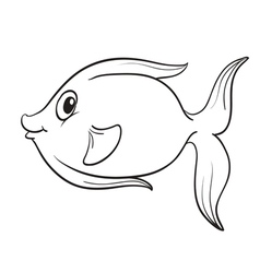 Fish outline vector image