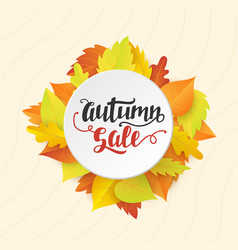 autumn sale banner template with bright leaves vector image vector image