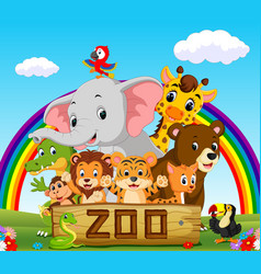 collection of zoo animals with guide vector image
