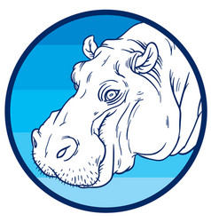 Hippopotamus amphibius or river horse vector