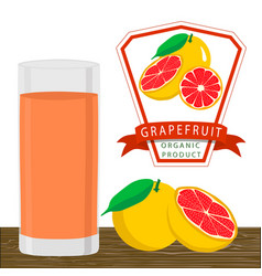 the grapefruit vector image vector image