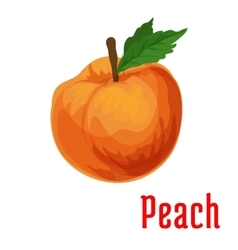Fresh juicy peach fruit icon vector