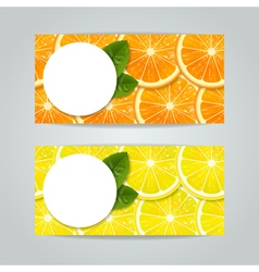 banners set with citrus fruits vector image vector image