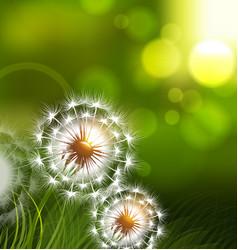 Dandelion field spring conceptual vector