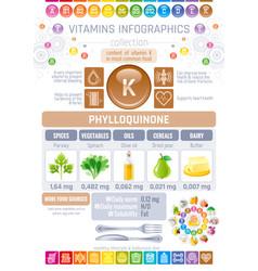 Phylloquinone vitamin k rich food icons healthy vector