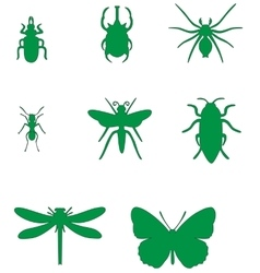 Insect set 02 vector
