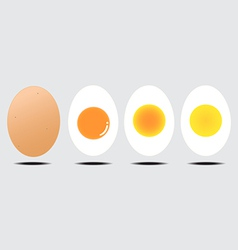 boiled egg vector image vector image