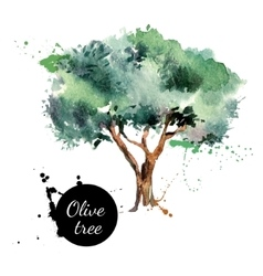 Olive tree  Hand drawn vector image