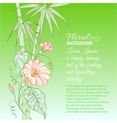 Bindweed flower and bamboo vector image vector image