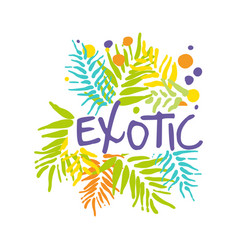 exotic logo with palm leaves summer vacation vector image vector image