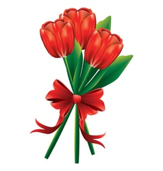 Tulip bouquet with red bow vector image vector image