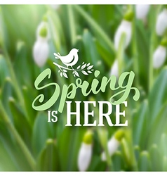 Spring blured background vector