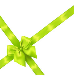 Light green realistic bow with ribbons vector