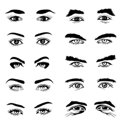 Male and female eyes eyebrows elements vector image