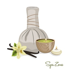 Spa theme object vector image vector image