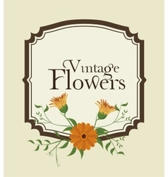 Vintage flowers decoration icon vector