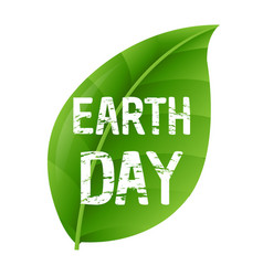 earth day leaf vector image vector image