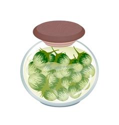 Jar of pikled green eggplants in malt vinegar vector