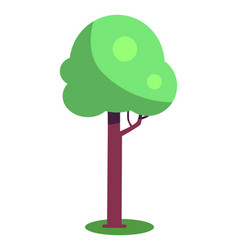 tree with brown trunk and green leaves vector image