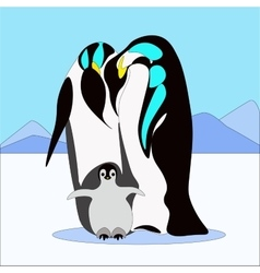 pinguin family in flat style vector image vector image
