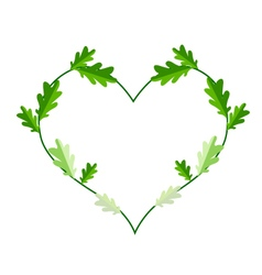 Fresh Green Leaves in A Heart Shape Frame vector image