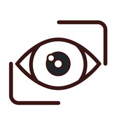 Eye emblem icon image vector