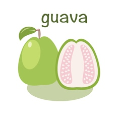 Guava icon in flat style isolated objec vector
