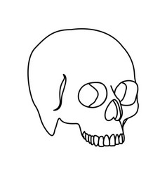 Silhouette side view human skull icon flat vector