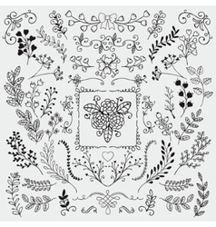 Hand sketched rustic floral doodle branches vector