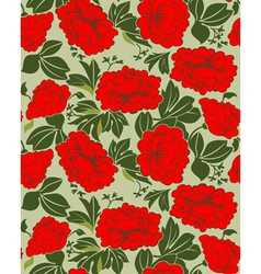 red peonies vector image