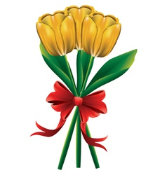 Tulip bouquet with red bow3 vector image vector image