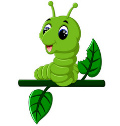 funny caterpillar runs on a tree branch vector image