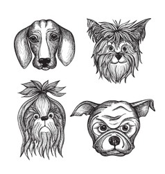 Hand Drawn Dog Faces Set vector image