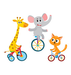 cute elephant giraffe cat animal characters vector image