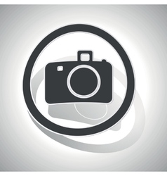 Curved camera sign icon vector